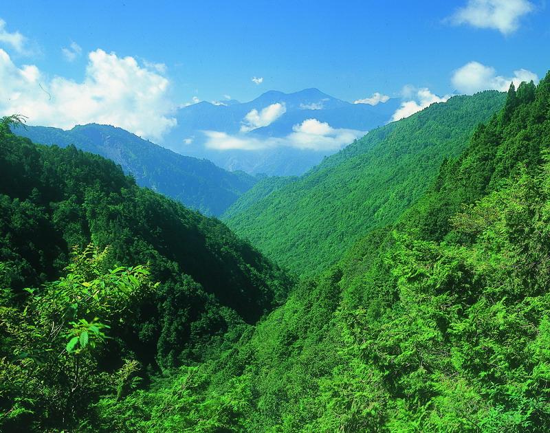 太平山國家森林遊樂區景觀